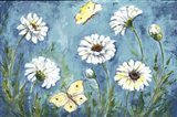 Daisies and Butterfly Meadow