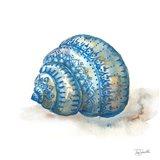 Bohemian Shells I