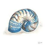 Bohemian Shells IV
