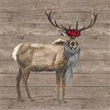 Warm in the Wilderness Deer