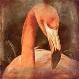 Flamingo Masquerade