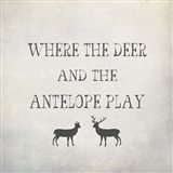 Where the Deer and Antelope