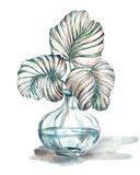 Island Tropics Frond in Bottle IV