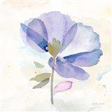 Poppy Single Purple