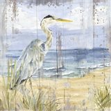 Birds of the Coast Rustic I