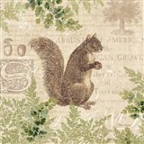 Woodland Trail III (Squirrel)