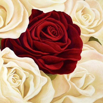 Rose Composition (Detail) Poster by Serena Biffi for $76.25 CAD