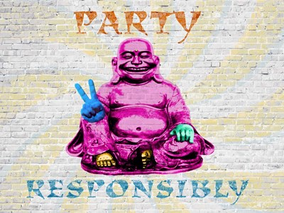 Party Responsibly Poster by Masterfunk Collective for $38.75 CAD