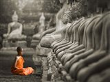 Young Buddhist Monk Praying, Thailand (BW)