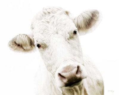Cow V Poster by Jennifer Pugh for $48.75 CAD