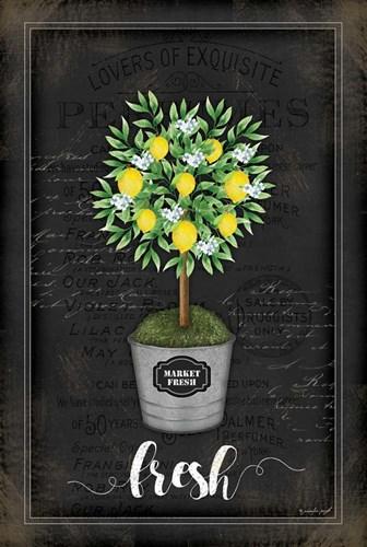 Lemon Topiary Poster by Jennifer Pugh for $43.75 CAD