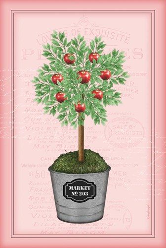 Apple Topiary - Pink Poster by Jennifer Pugh for $43.75 CAD