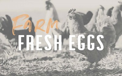 Farm Fresh Eggs Poster by Linda Woods for $42.50 CAD