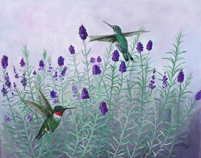 Humming Lavender Poster by Julie Peterson for $68.75 CAD
