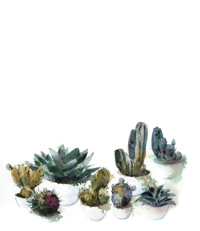 Cacti Gathering Poster by Sophia Rodionov for $53.75 CAD