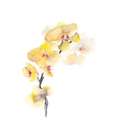 Orchid Poster by Sophia Rodionov for $36.25 CAD