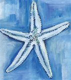 Starfish Blues