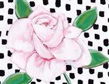 Pink Rose II