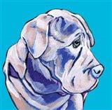 Terrier II