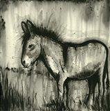BW Donkey