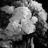 Rhapsody in Bloom - B&W