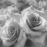 Rose Pair B&W