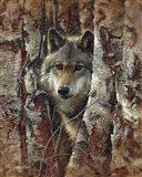 Wolf - Woodland Spirit