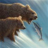 Brown Bears - Fishing Lesson