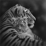 Tiger Mother and Cub - Cherished - B&W