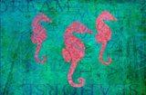 Grace Seahorse