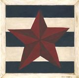 Red Star, Blue Stripes