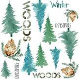 Woods Pattern
