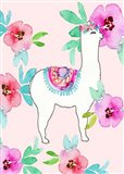 Llama and Flowers