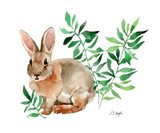 Brown Bunny with Green leaves