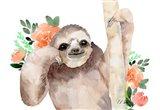 Big Brown Sloth - Peach Flowers