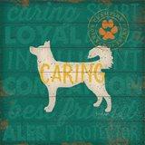 Caring Dog