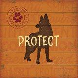 Protect Dog
