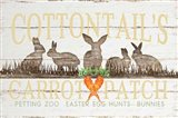 Cottontail's Carrot Patch