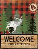 Cabin Welcome Plaid I
