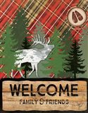 Cabin Welcome Plaid II