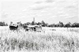 Tractor VI