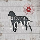 All You Need is Love - Dog
