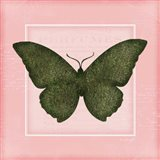 Butterfly II - Pink