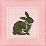 Bunny II - Pink