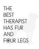 The Best Therapist