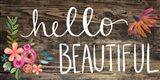 Hello Beautiful II