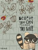 Believe You Can - Raccoon