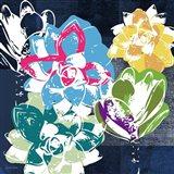 Colorful Succulents II