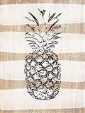 Simple Stripes Pineapple
