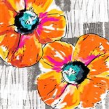 Orange Grey Poppies